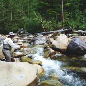 Creek Fishing