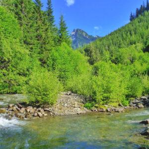 Nooksack River Canyon Creek