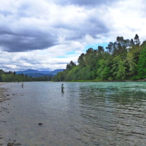 Skagit Salmon Fishing