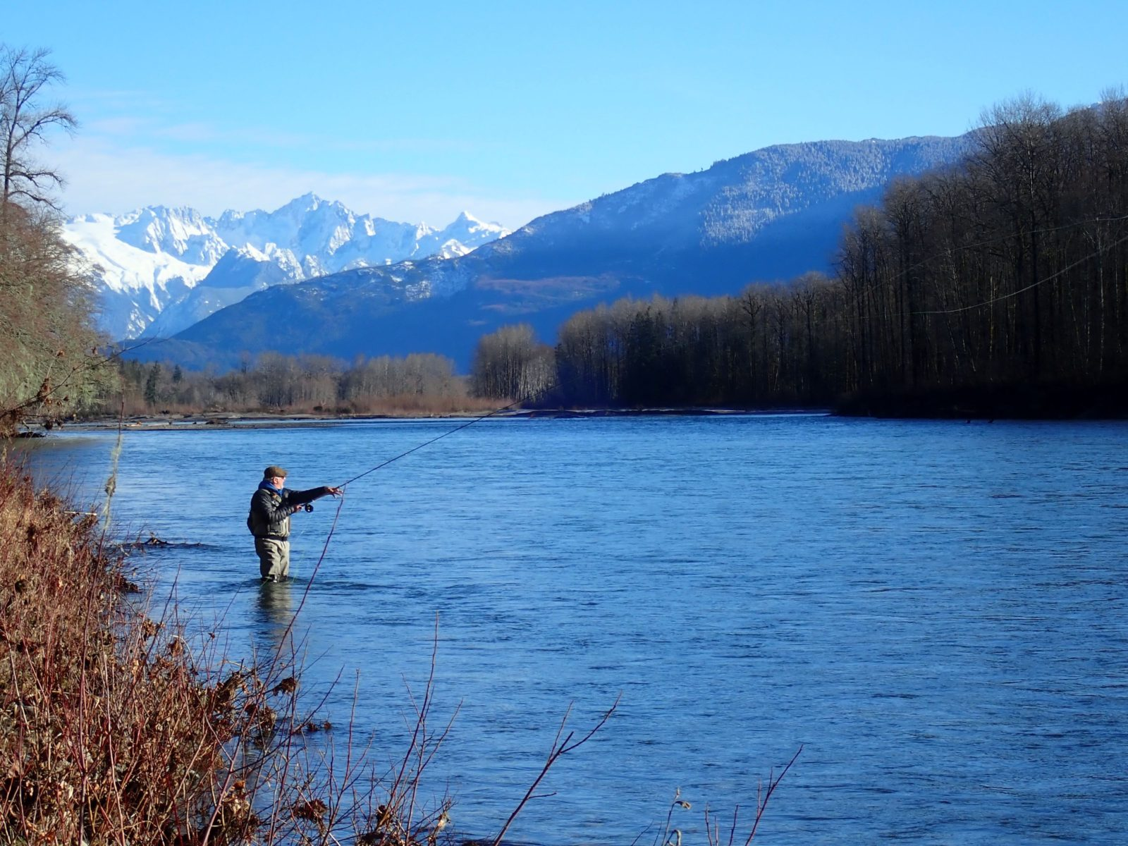 Fly fishing report january 2018 the confluence fly shop for Fly fishing blog